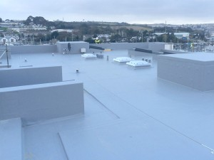 Marnick Roofing - working with large businesses throughout Cornwall
